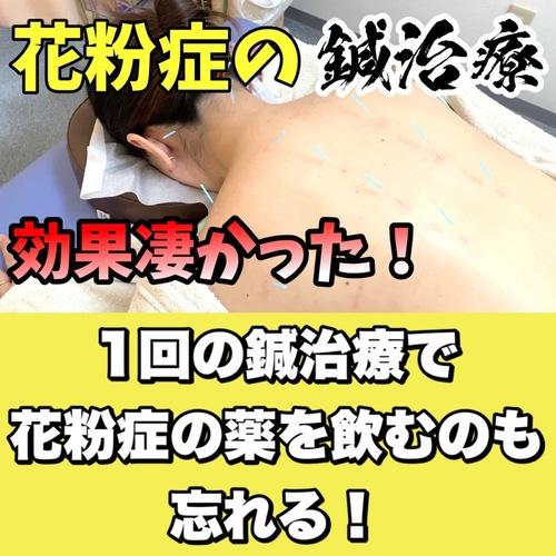花粉症対策には鍼が効く息苦しい軽減ブログ.jpgのサムネイル画像