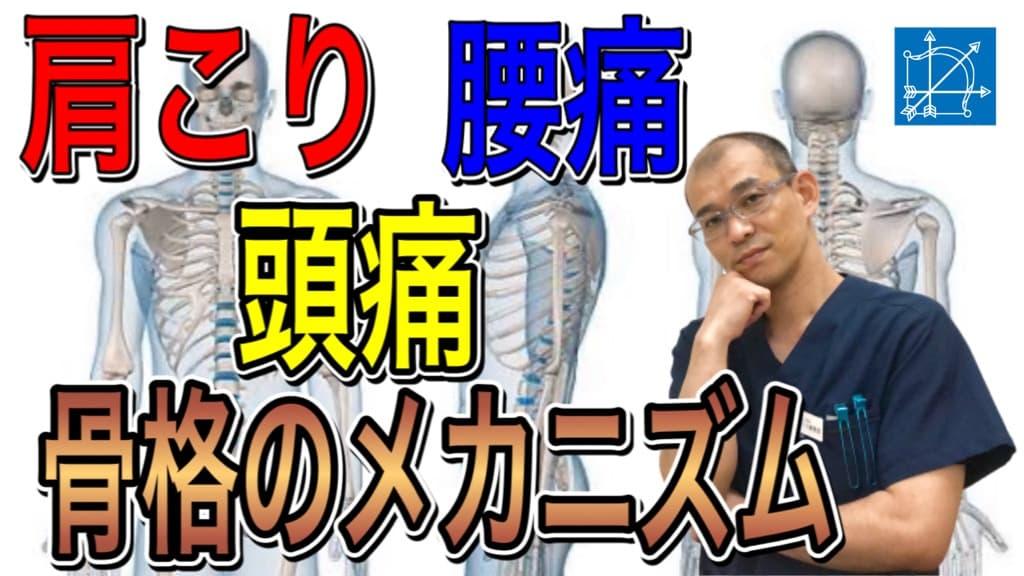 【渋谷区恵比寿 鍼灸・整体】肩こり腰痛頭痛の原因.jpg