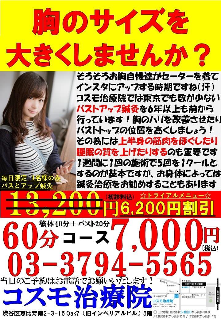 バストアップ(新料金)トピック_1124.jpg