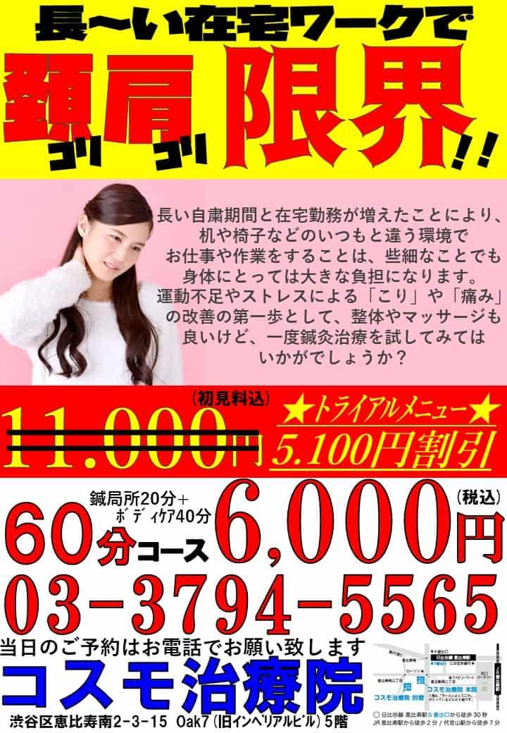 渋谷区恵比寿首こり肩こり腰痛鍼灸整体在宅ワーク.jpg